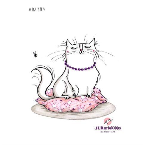 #162-2017 Katze